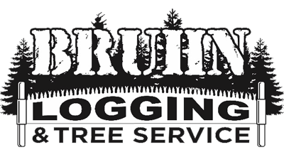 Bruhn Logging & Tree Service