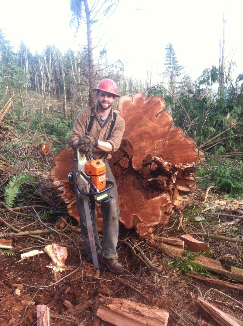 Tree-Logging-Enumclaw-WA